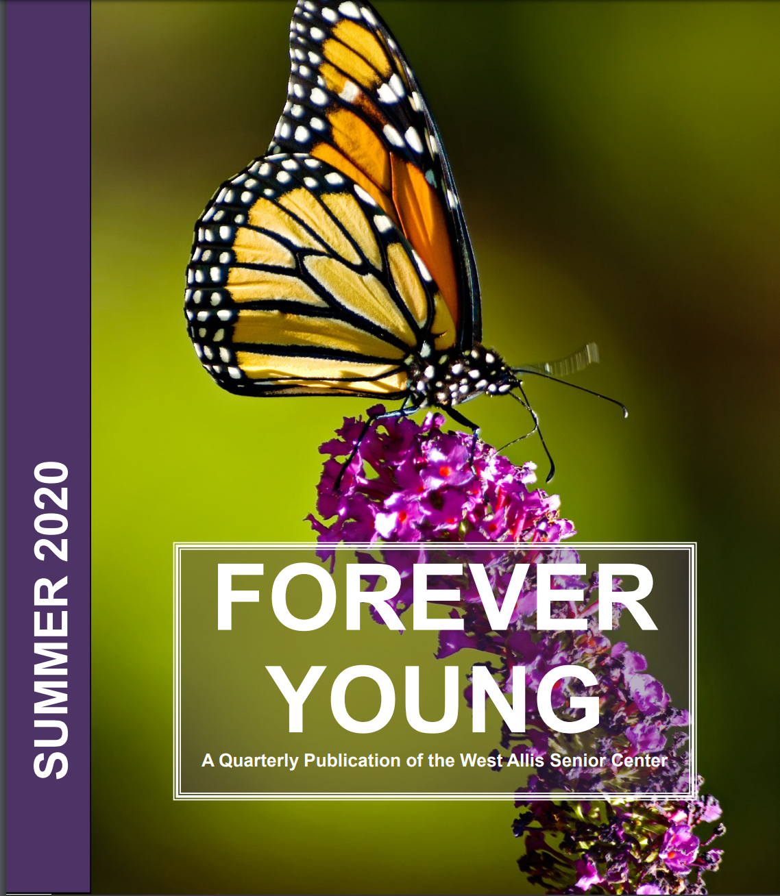 Cover of Summer 2020 Forever Young Senior Center Newsletter Photograph of Close Up of Monarch Butter